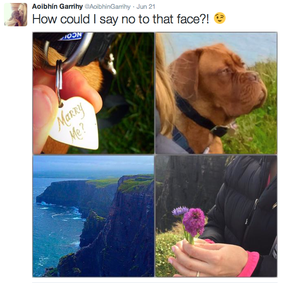 The proposal that melted everyone's hearts